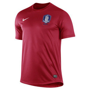 12-13 Korea Home Authentic Match Jersey - AUTHENTIC