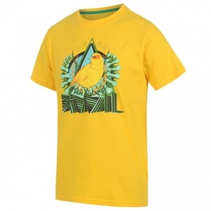 [Order] 14-15 Brasil (CBF) Core Plus T-Shirt - Yellow