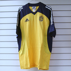 02-04 Sweden Trainig Shirt