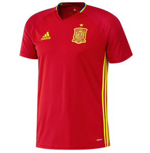16-17 Spain (FEF) Training(TRG) Jersey